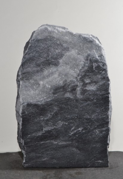 Grey Wolves GW16270
